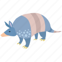 animal, armadillo, armored, banded, mammal, southern icon