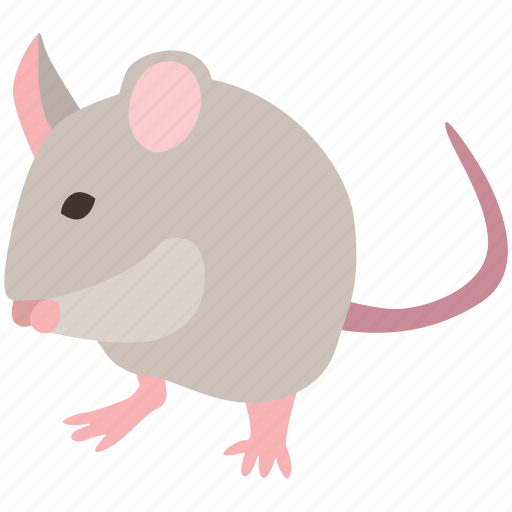 field, mice, mouse, pest, pet, rodent, trap icon