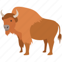 american, bison, bovine, bull, european, extinct, hunting icon