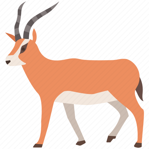 africa, antelope, blackbuck, bushbuck, gazelle, south, springbok icon