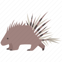 cape, crested, mammal, porcupine, quills, rodent, spines icon