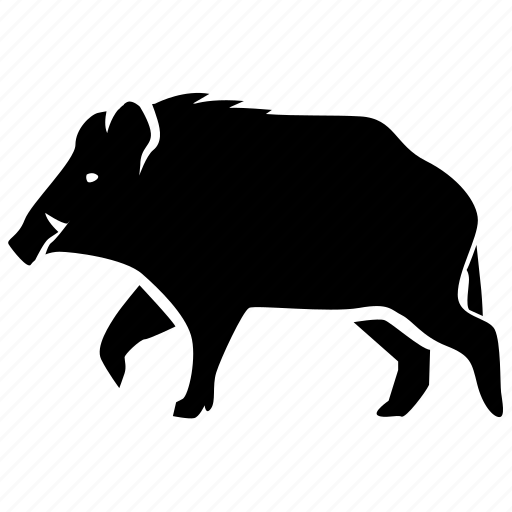 boar, feral, game, hunting, pig, swine, wild icon