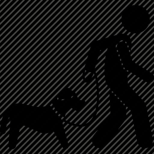 dog, man, training, walking icon