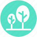 forest, landscape, nature, park, travel, trees, woods icon