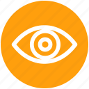 eye, eyeball, human eye, overview, search, view, vision