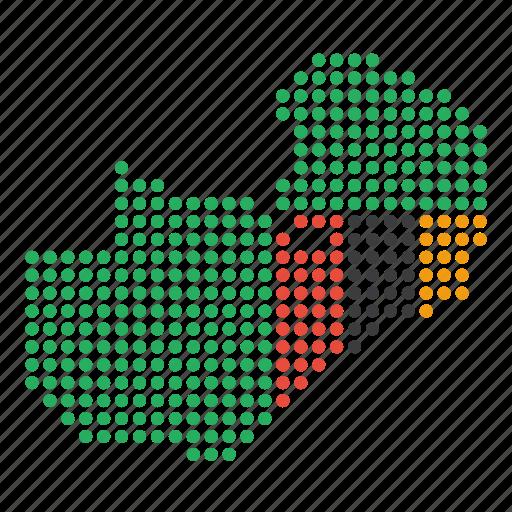 country, map, zambia, zambian icon