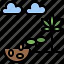 cannabis, drugs, germination, healthcare, marijuana, medical, premium icon