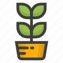 flower, garden, gardening, grow, leaf, nature, plant icon