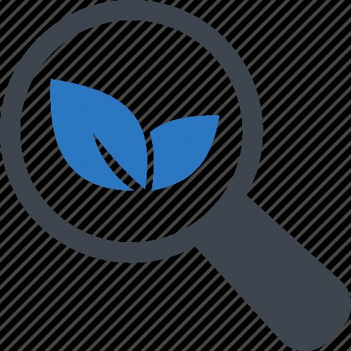 organic, search, seo, traffic icon