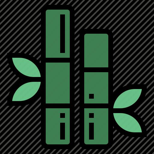 bamboo, botanical, japan, plant icon