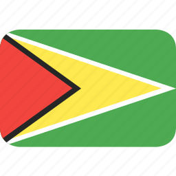 country, flag, guyana, nation icon