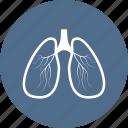 lungs, hospital, ambulance, medicine, organs, medical