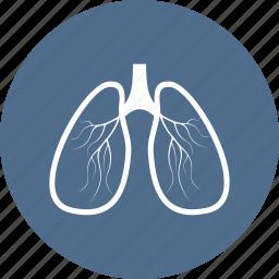 ambulance, hospital, lungs, medical, medicine, organs icon