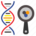dna, laboratory, loupe, magnifier, medical icon
