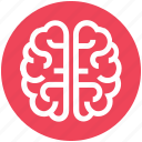 brain, healthcare, intelligence, medical, mind