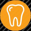 dentist, healthcare, medical, teeth, tooth