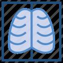 anatomy, human, lungs, medical, ribs icon