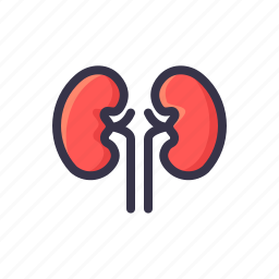 health, kidney, kidnies, medical, organ, renal icon