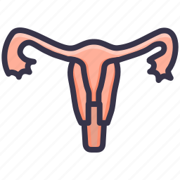 body, human, medical, part, tube, uterine, uterus icon