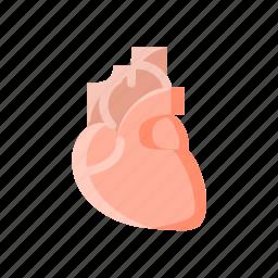 breath, cardiology, heart, life, medical, organ icon