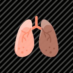 anatomy, breathe, detoxification, hepatology, lungs, medical, pulmonology icon