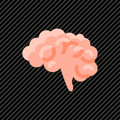 brain, brainstorming, medical, mind, neurology, neuroscience icon