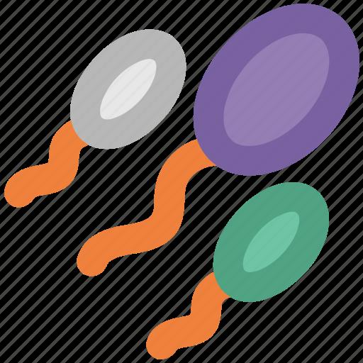 fertile, human sperms, semen, sperms, sperms cells icon
