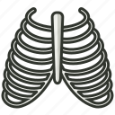 bone, health, healthcare, human, medical, rib icon