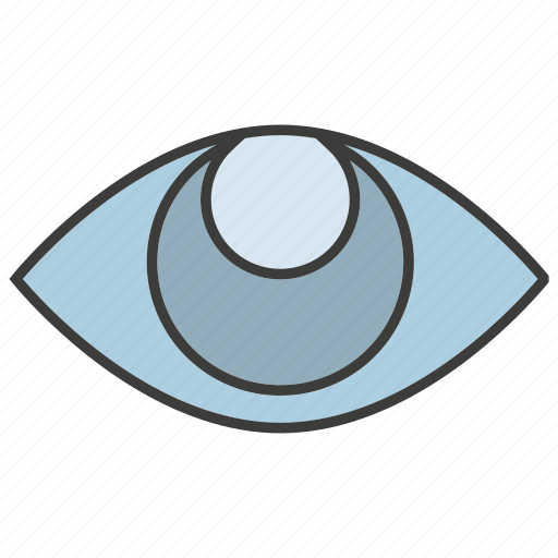 eye, iris scan, scan, view icon