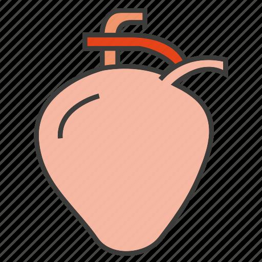 heart, organ icon