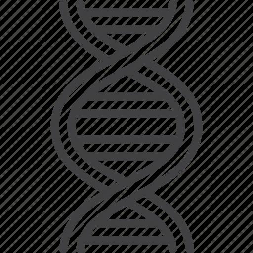 dna, genetic, molecule, science icon