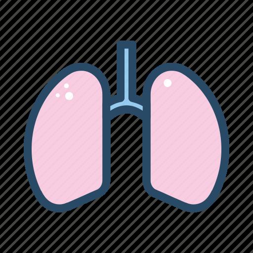 body part, human, lung, medical, organ icon