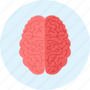 brain, brainstorm, brainstorming, medical, medicine icon