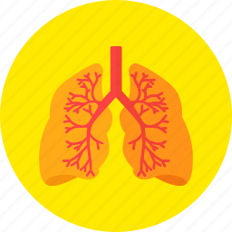 lungs, medical, medicine, organ, respiratory, system icon