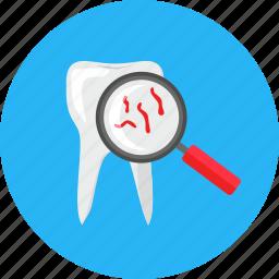 dentistry, doctor, health, healthcare, medical, medicine, tooth icon