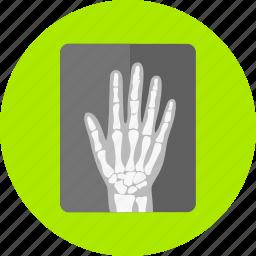 examination, medical, ray, roentgen, x icon