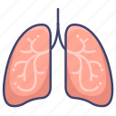 anatomy, lung, lungs, organ icon