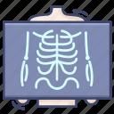 chest, ray, skeleton, x, xray icon