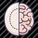 anatomy, brain, mental, surgery icon