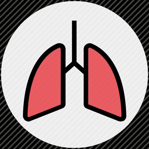 anatomy, breathe, lungs, medical, pulmonology, respiratory icon