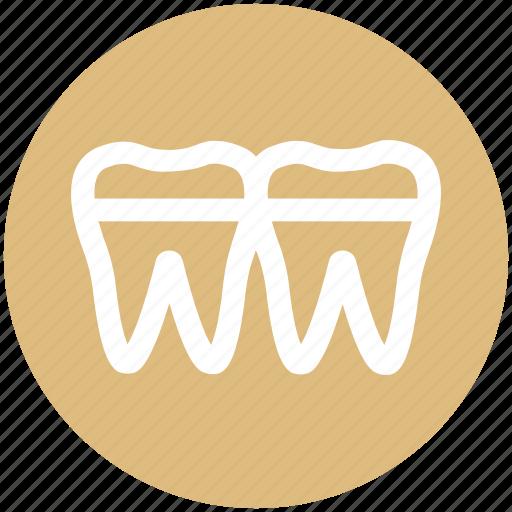 .svg, anatomy, braces, denture, retainer, teeth icon