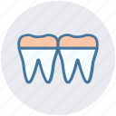 anatomy, braces, denture, retainer, teeth icon