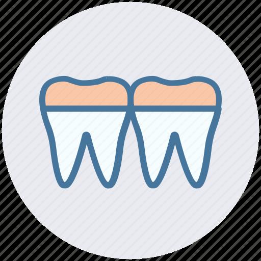 anatomy, braces, denture, retainer, teeth icon