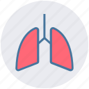 anatomy, breathe, lungs, medical, pulmonology, respiratory icon