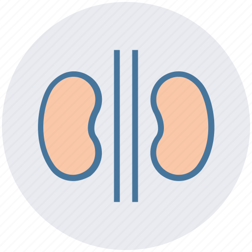 cancer, hospital, kidney, kidney failure, kidnies, organ icon