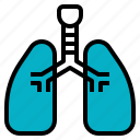 breath, care, hospital, lung, respiration, xray icon