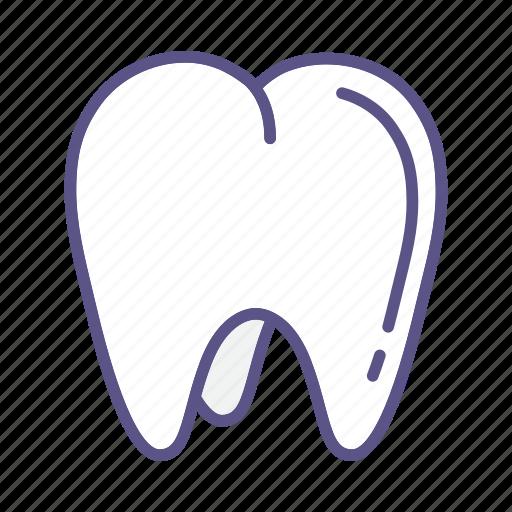 dental, dentist, dentistry, medical, mouth, teeth, tooth icon