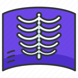 health, healthcare, hospital, medical, xray icon