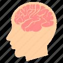 brain, face, idea, man, male, mind, thought