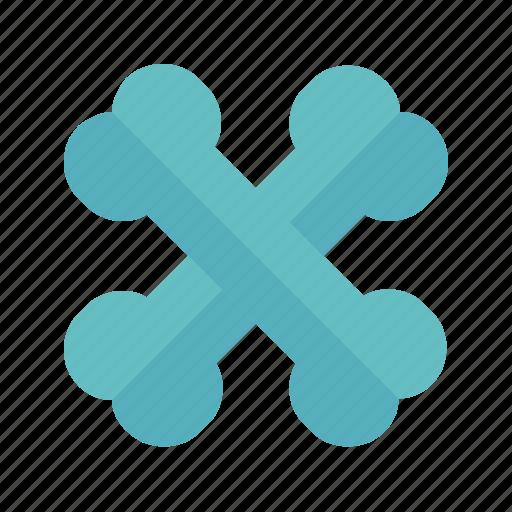 Bones, care, elements, health, medical icon - Download on Iconfinder